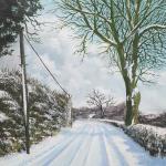 Tom Carey – Winter Sunshine
